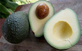 Sharwil Avacado